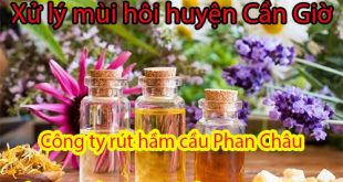 Xử lý mùi hôi huyện Cần Giờ Phan Châu ưu đãi lớn 25%
